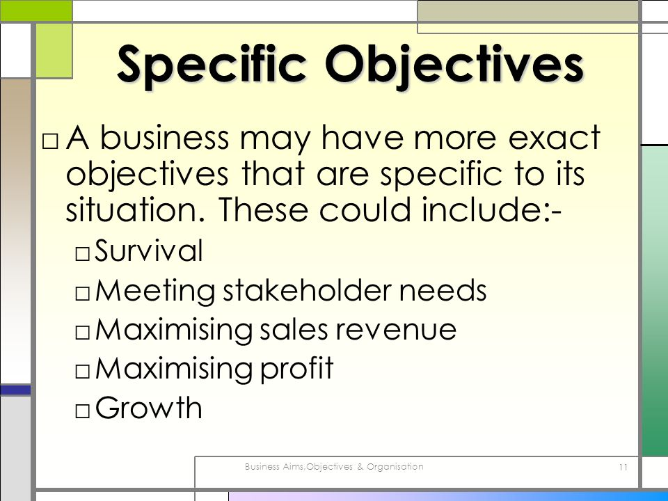 Business Aims,Objectives & Organisation 11 Specific Objectives A business may have more exact objectives that are specific to its situation. These cou