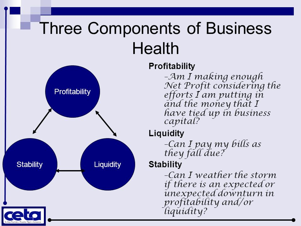 Three Components of Business Health Profitability StabilityLiquidity Profitability –Am I making enough Net Profit considering the efforts I am putting
