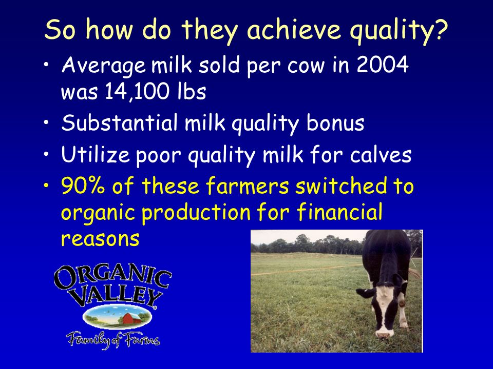 So how do they achieve quality? Average milk sold per cow in 2004 was 14,100 lbs Substantial milk quality bonus Utilize poor quality milk for calves 9