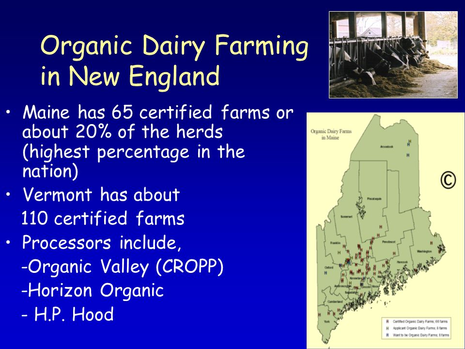Organic Dairy Farming in New England Maine has 65 certified farms or about 20% of the herds (highest percentage in the nation) Vermont has about 110 c