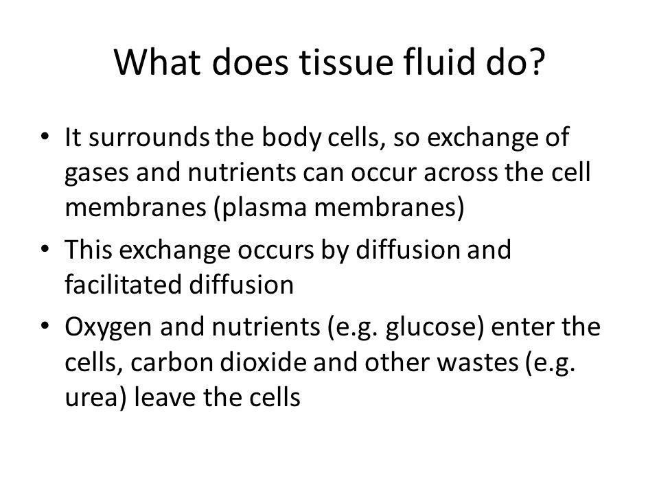 What does tissue fluid do? It surrounds the body cells, so exchange of gases and nutrients can occur across the cell membranes (plasma membranes) This
