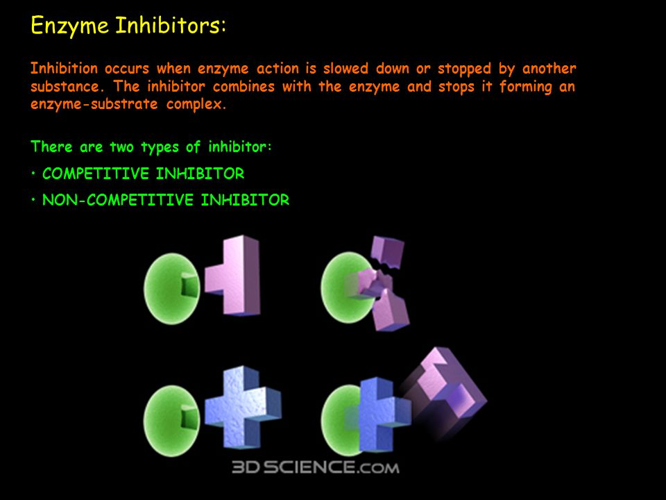 Enzyme Inhibitors: Inhibition occurs when enzyme action is slowed down or stopped by another substance. The inhibitor combines with the enzyme and sto