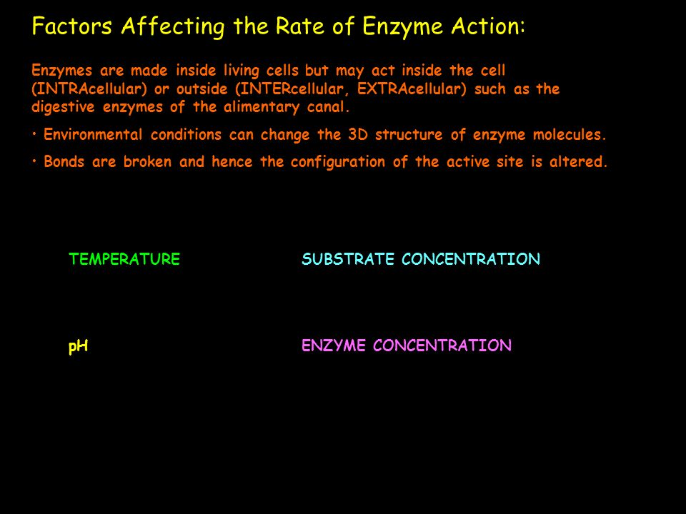 Factors Affecting the Rate of Enzyme Action: Enzymes are made inside living cells but may act inside the cell (INTRAcellular) or outside (INTERcellula