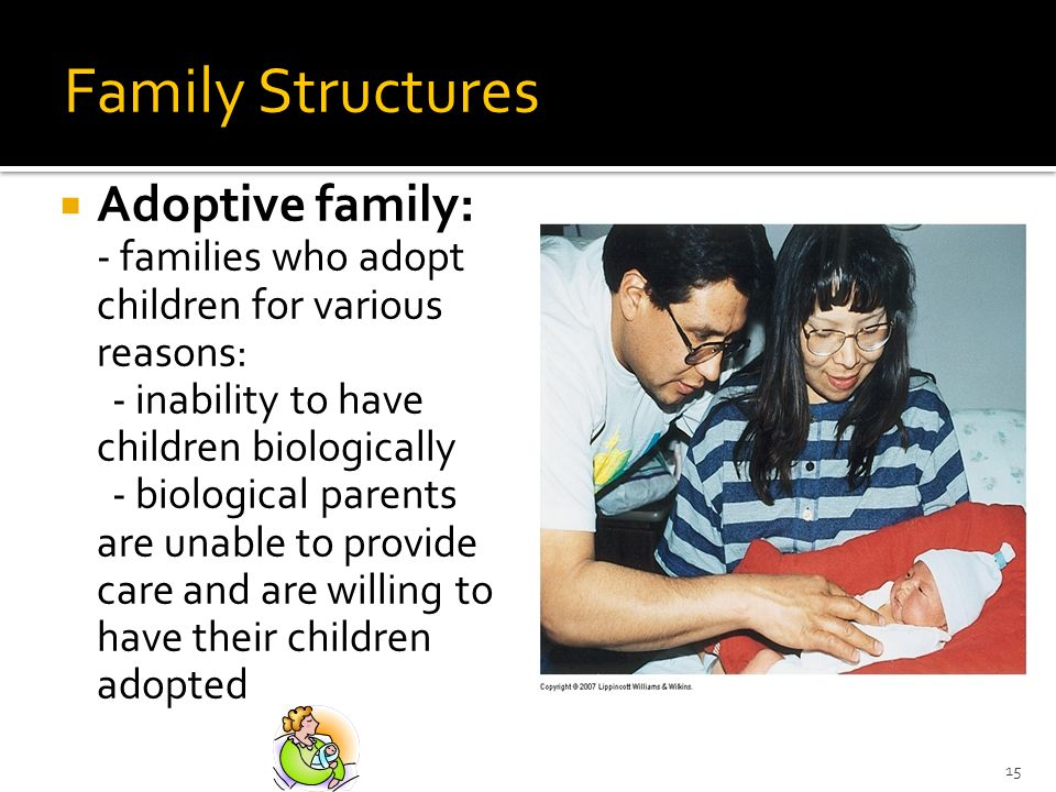 15 Family Structures Adoptive family: - families who adopt children for various reasons: - inability to have children biologically - biological parents are unable to provide care and are willing to have their children adopted
