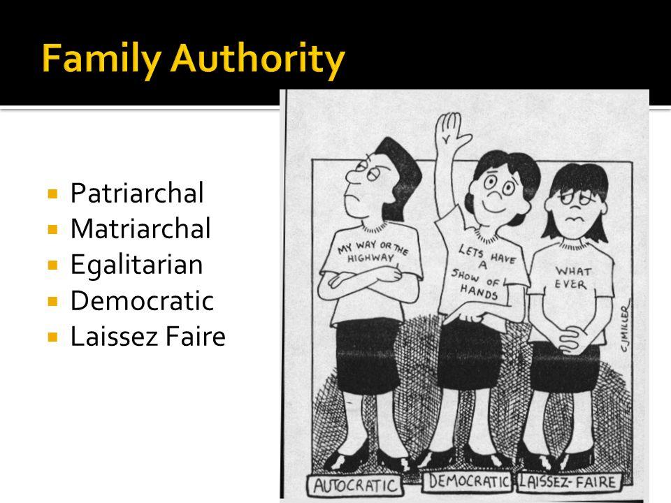 Patriarchal Matriarchal Egalitarian Democratic Laissez Faire