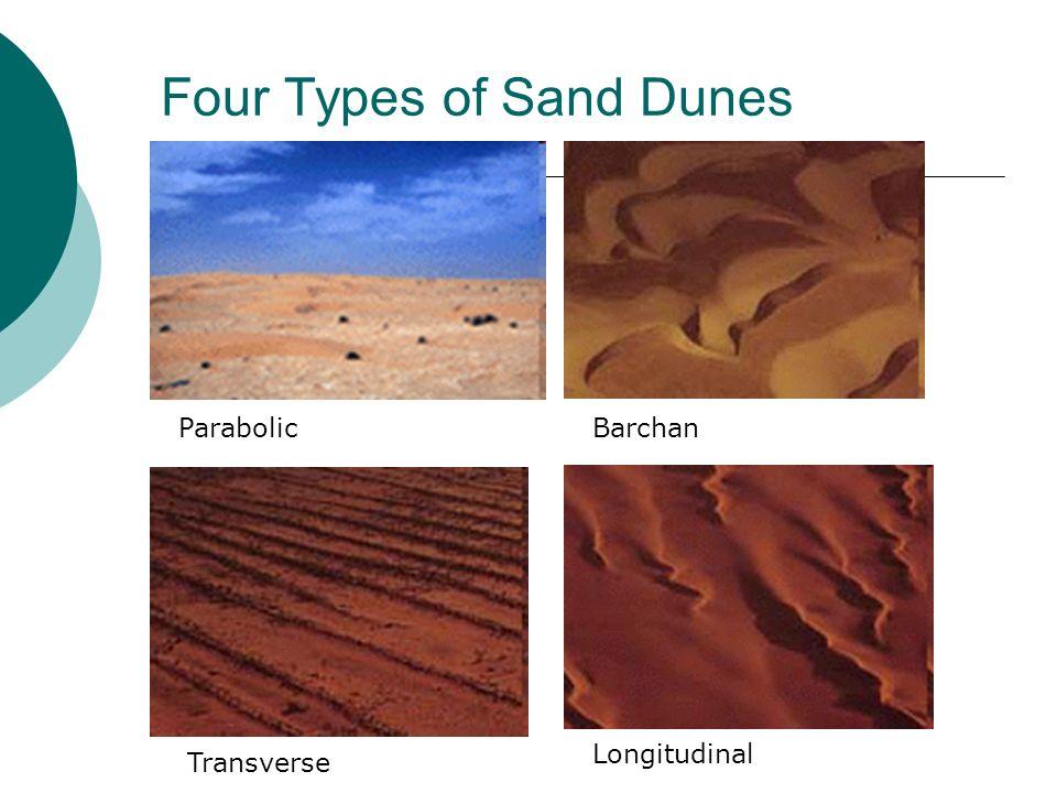 Four Types of Sand Dunes ParabolicBarchan Transverse Longitudinal
