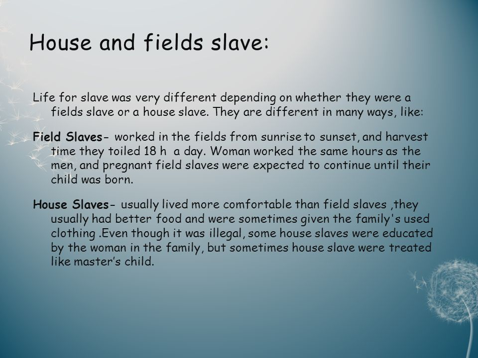 House and fields slave: Life for slave was very different depending on whether they were a fields slave or a house slave.