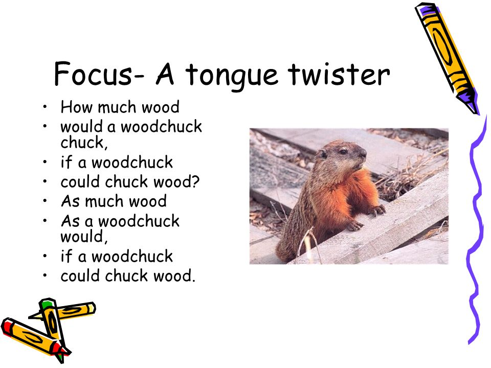 Focus- A tongue twister How much wood would a woodchuck chuck, if a woodchuck could chuck wood.