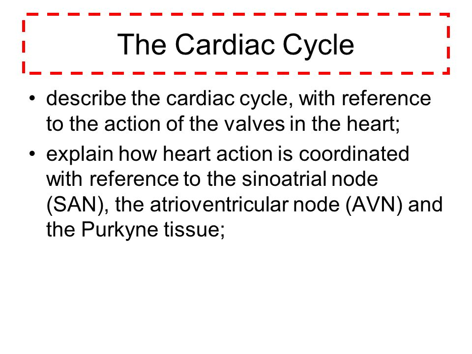 The Cardiac Cycle describe the cardiac cycle, with reference to the action of the valves in the heart; explain how heart action is coordinated with re