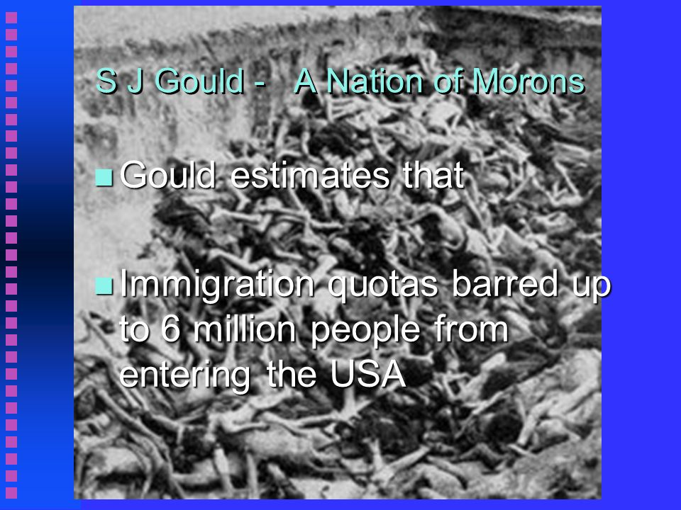 S J Gould - A Nation of Morons n Gould estimates that n Immigration quotas barred up to 6 million people from entering the USA