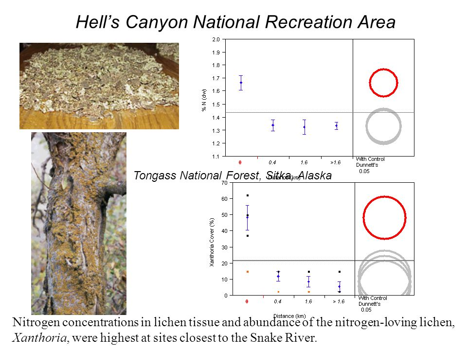 Hells Canyon National Recreation Area Nitrogen concentrations in lichen tissue and abundance of the nitrogen-loving lichen, Xanthoria, were highest at