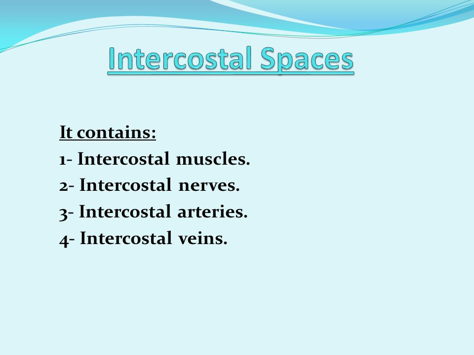 It contains: 1- Intercostal muscles. 2- Intercostal nerves. 3- Intercostal arteries. 4- Intercostal veins.