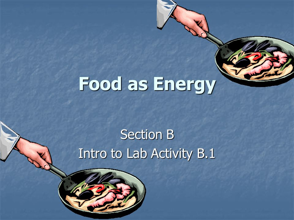 Food as Energy Section B Intro to Lab Activity B.1