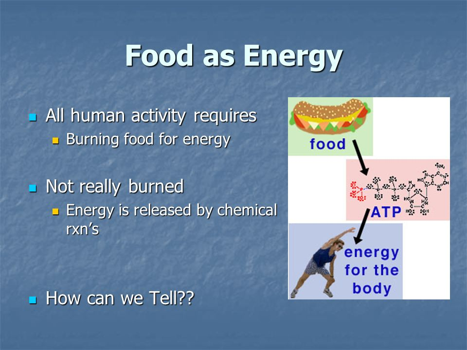 Food as Energy All human activity requires All human activity requires Burning food for energy Burning food for energy Not really burned Not really burned Energy is released by chemical rxns Energy is released by chemical rxns How can we Tell .