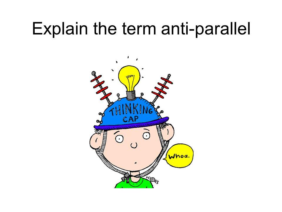 Explain the term anti-parallel