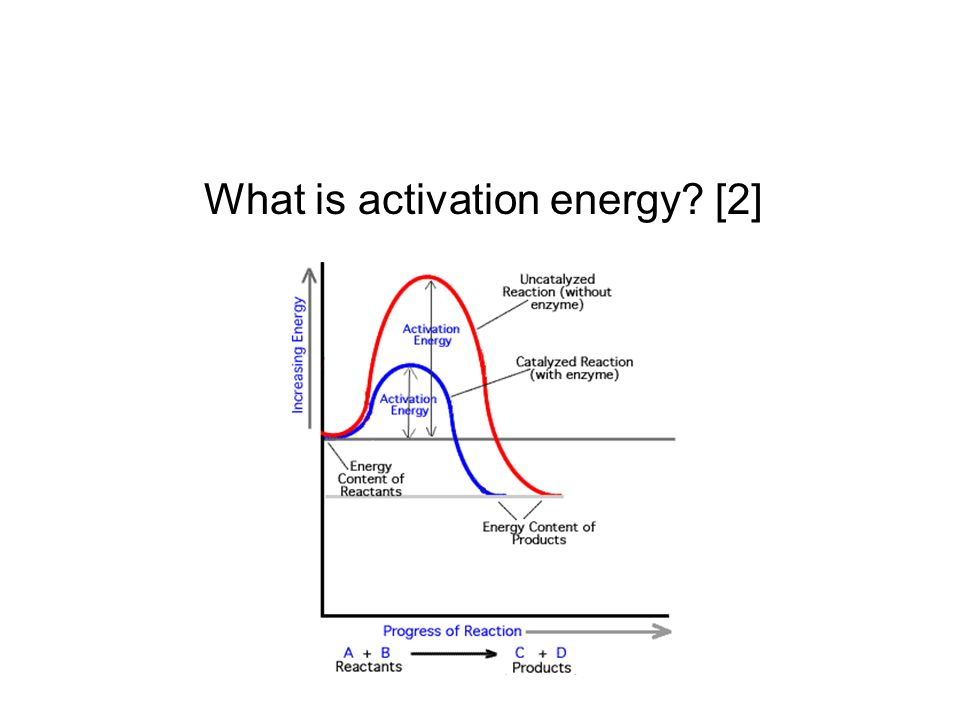 What is activation energy? [2]