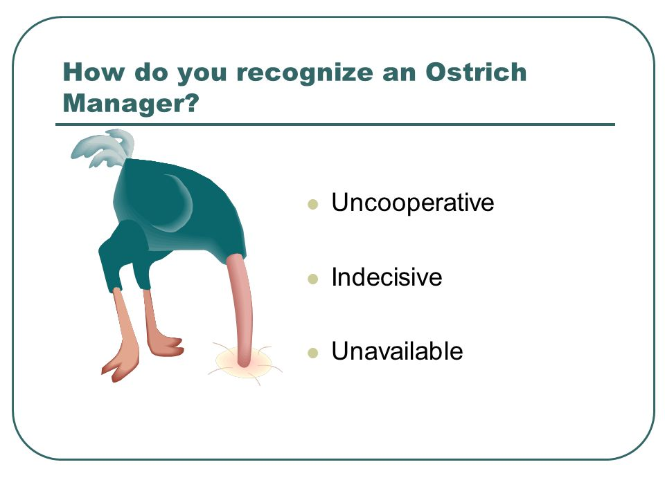 How do you recognize an Ostrich Manager Uncooperative Indecisive Unavailable