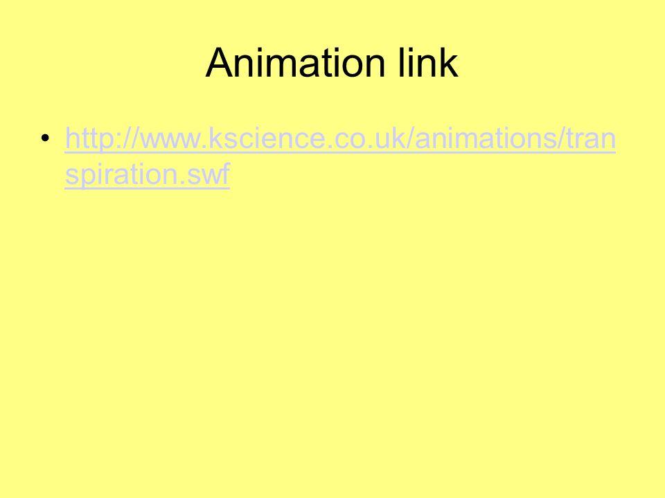 Animation link http://www.kscience.co.uk/animations/tran spiration.swfhttp://www.kscience.co.uk/animations/tran spiration.swf