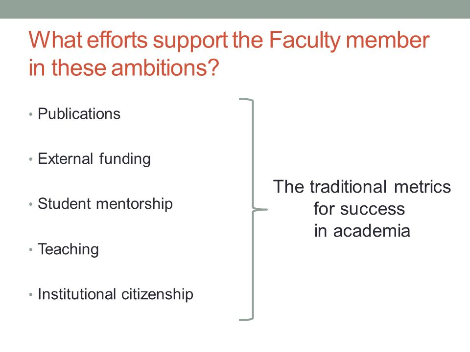 What efforts support the Faculty member in these ambitions.