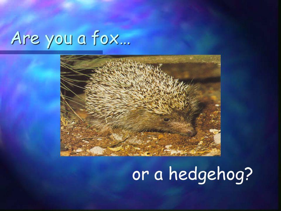 Are you a fox… or a hedgehog?