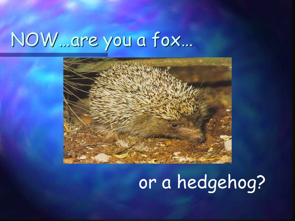 NOW…are you a fox… or a hedgehog