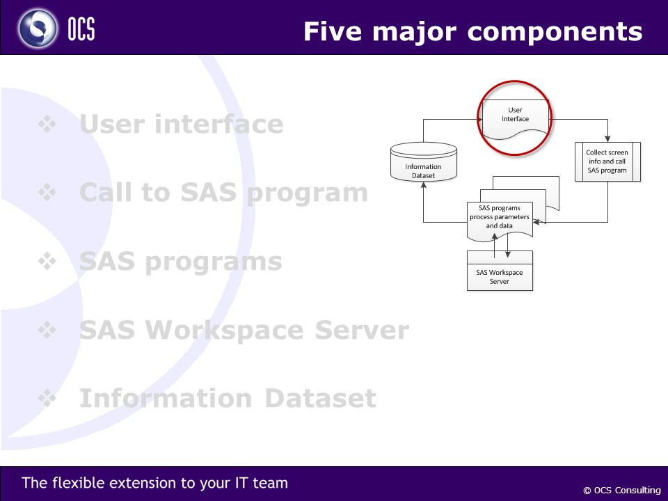 Five major components User interface Call to SAS program SAS programs SAS Workspace Server Information Dataset © OCS Consulting