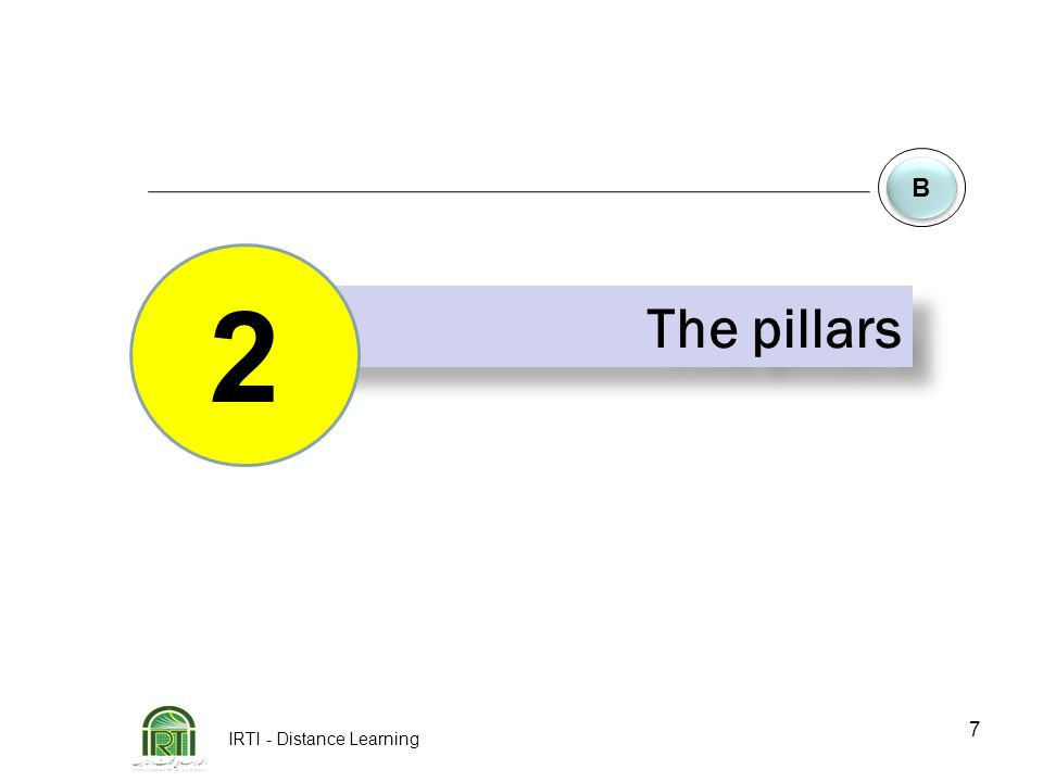 IRTI - Distance Learning 7 B B The pillars 2