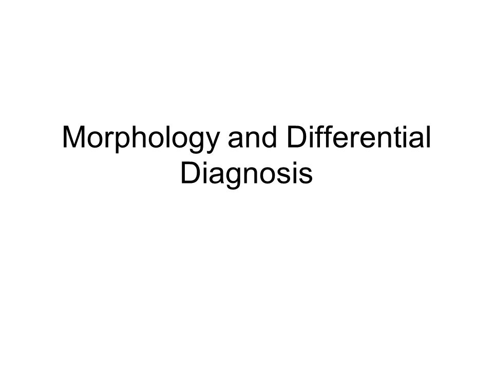 Morphology and Differential Diagnosis