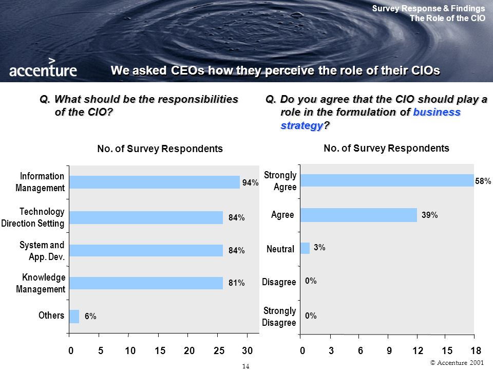 13 © Accenture 2001 … though other designations have surfaced with the increased responsibilities associated with the CIO role Survey Response & Findi