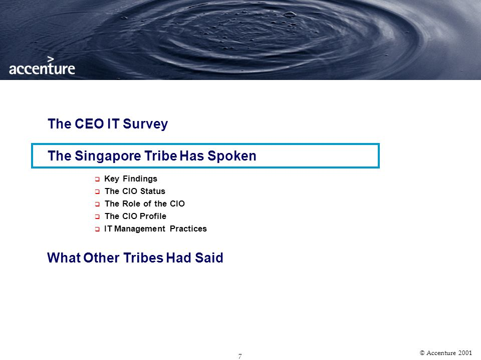 6 © Accenture 2001 … which included organizations of various types Survey Demographics Corporate Profile of Survey Respondents SME 23.5% Large Domesti