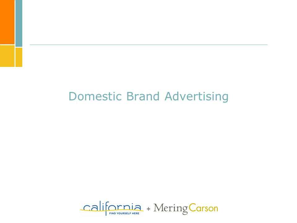 + Domestic Brand Advertising