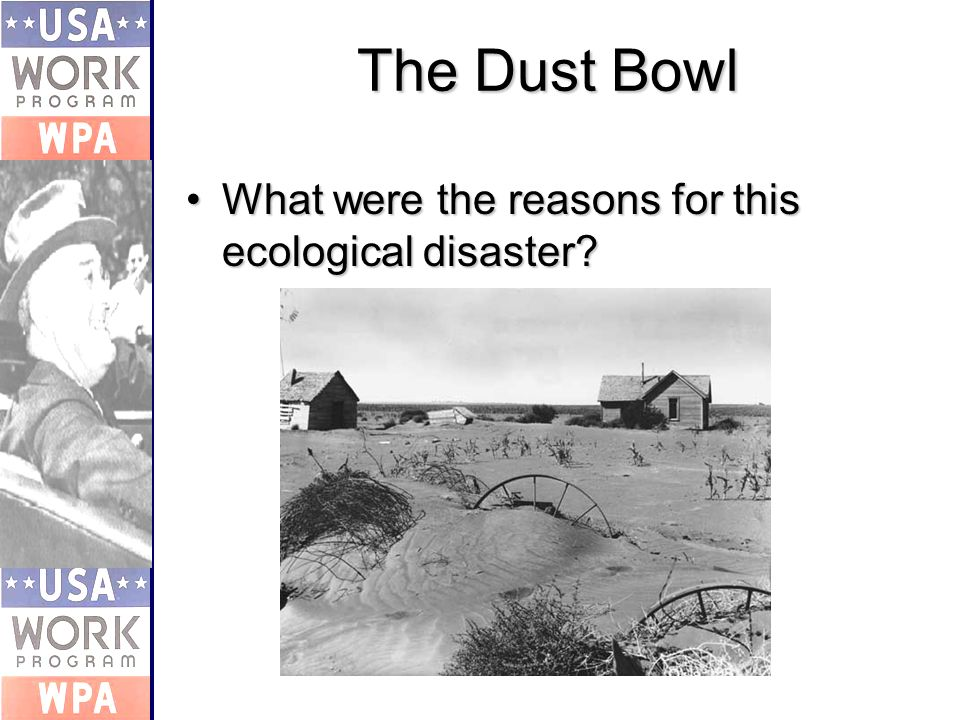 The Dust Bowl What were the reasons for this ecological disaster What were the reasons for this ecological disaster