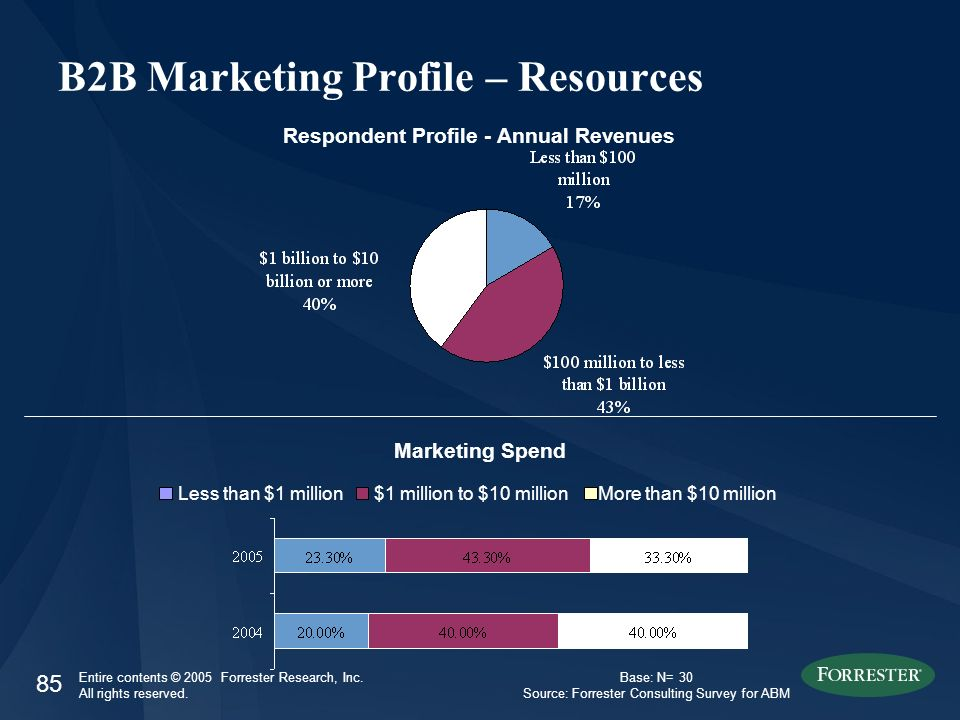 85 Entire contents © 2005 Forrester Research, Inc. All rights reserved. B2B Marketing Profile – Resources Respondent Profile - Annual Revenues Less th