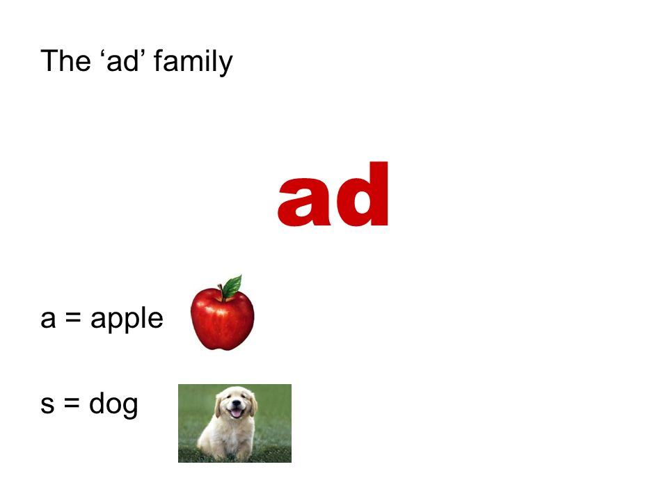 The ad family ad a = apple s = dog
