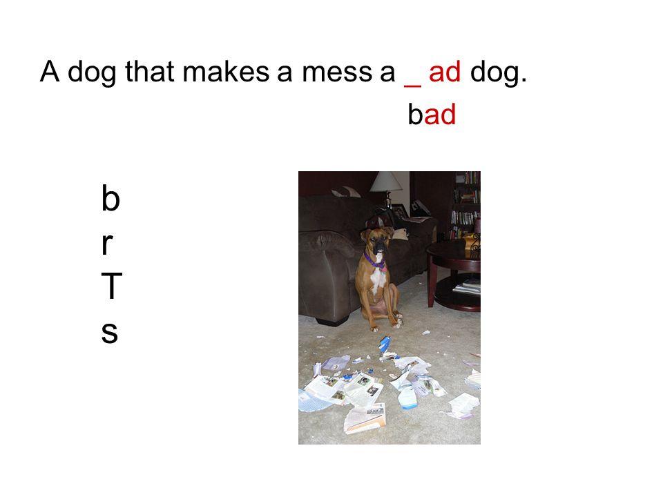 A dog that makes a mess a _ ad dog. bad brTsbrTs
