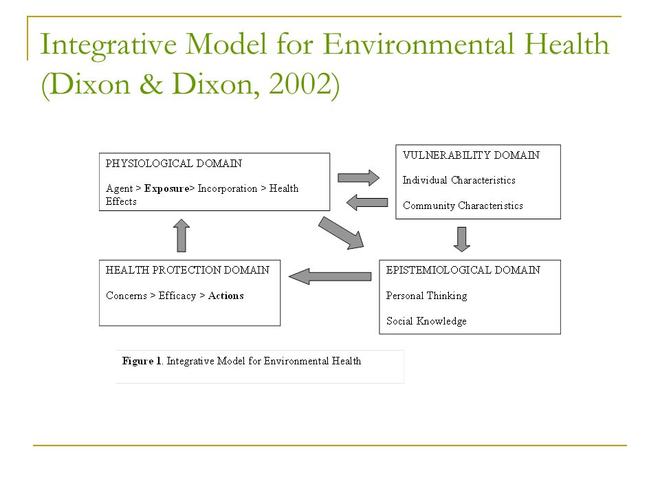 Integrative Model for Environmental Health (Dixon & Dixon, 2002)