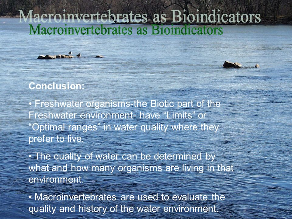 Conclusion: Freshwater organisms-the Biotic part of the Freshwater environment- have Limits or Optimal ranges in water quality where they prefer to li