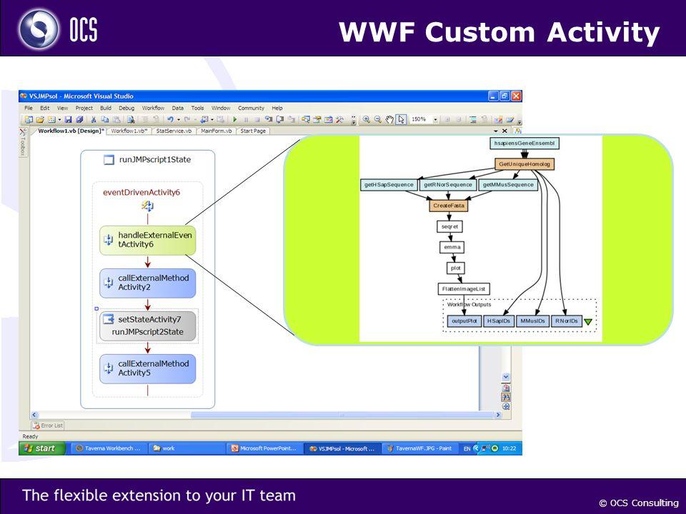 © OCS Consulting WWF Custom Activity