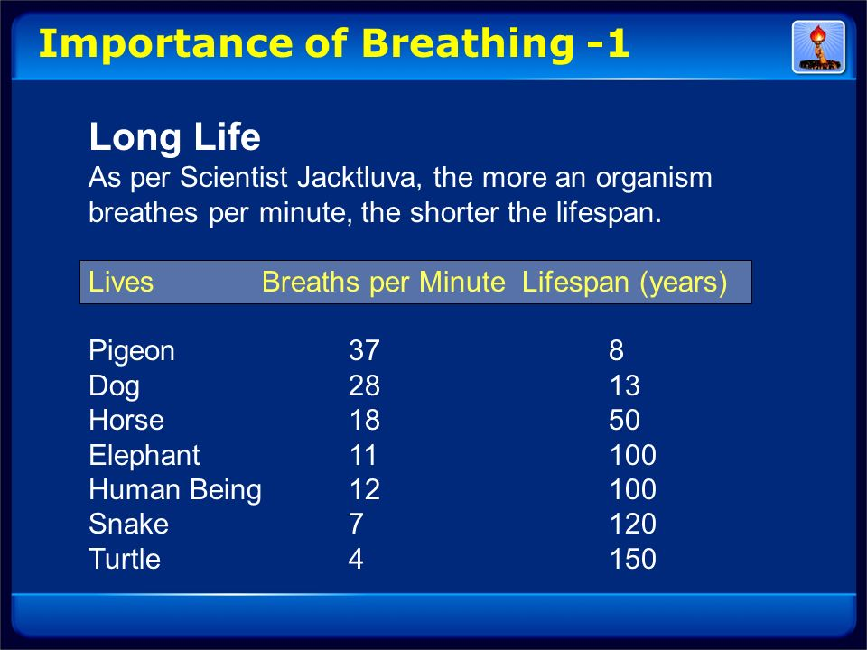 Importance of Breathing -1 Long Life As per Scientist Jacktluva, the more an organism breathes per minute, the shorter the lifespan. Lives Breaths per