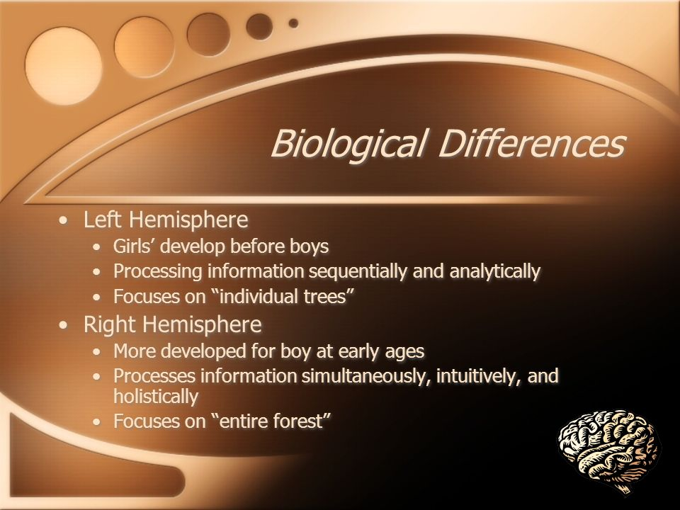 Biological Differences Left Hemisphere Girls develop before boys Processing information sequentially and analytically Focuses on individual trees Right Hemisphere More developed for boy at early ages Processes information simultaneously, intuitively, and holistically Focuses on entire forest Left Hemisphere Girls develop before boys Processing information sequentially and analytically Focuses on individual trees Right Hemisphere More developed for boy at early ages Processes information simultaneously, intuitively, and holistically Focuses on entire forest