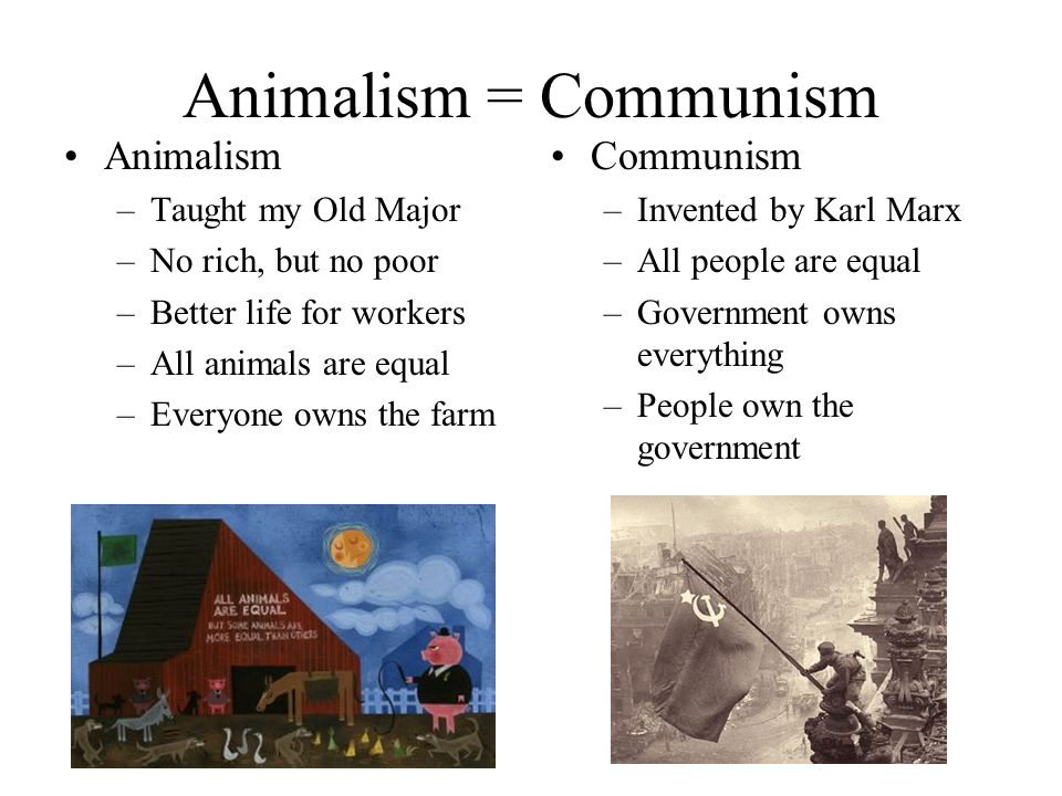 Animalism = Communism Animalism –Taught my Old Major –No rich, but no poor –Better life for workers –All animals are equal –Everyone owns the farm Com