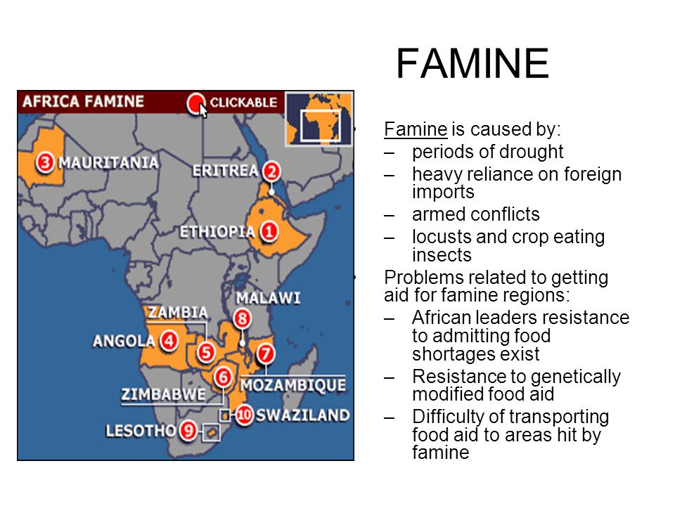 FAMINE Famine is caused by: –periods of drought –heavy reliance on foreign imports –armed conflicts –locusts and crop eating insects Problems related to getting aid for famine regions: –African leaders resistance to admitting food shortages exist –Resistance to genetically modified food aid –Difficulty of transporting food aid to areas hit by famine