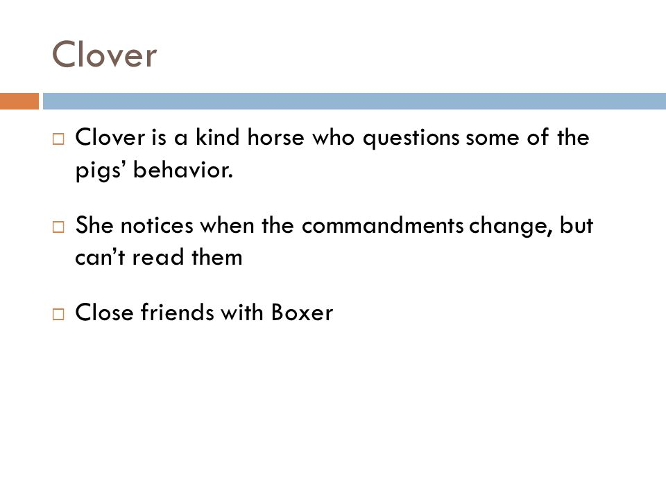 Clover Clover is a kind horse who questions some of the pigs behavior. She notices when the commandments change, but cant read them Close friends with