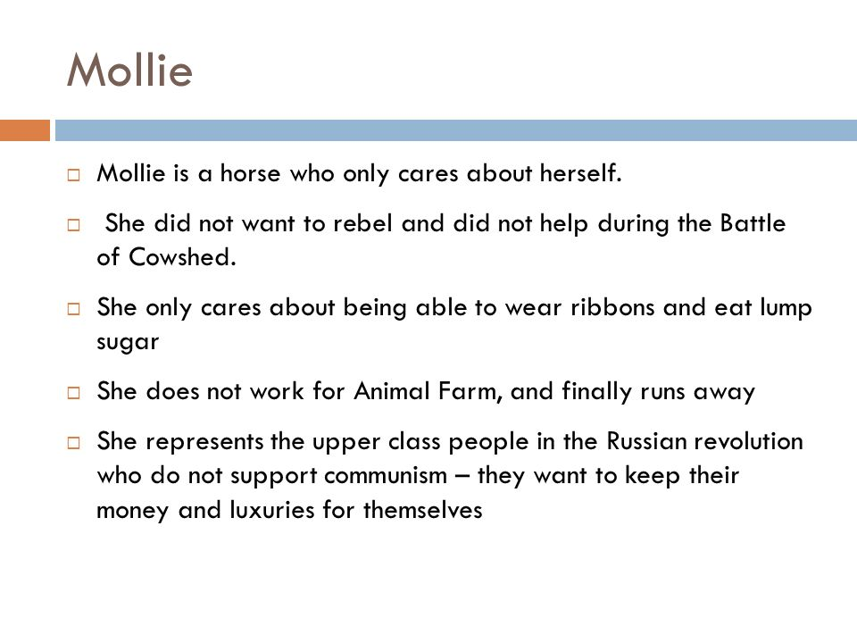 Mollie Mollie is a horse who only cares about herself. She did not want to rebel and did not help during the Battle of Cowshed. She only cares about b