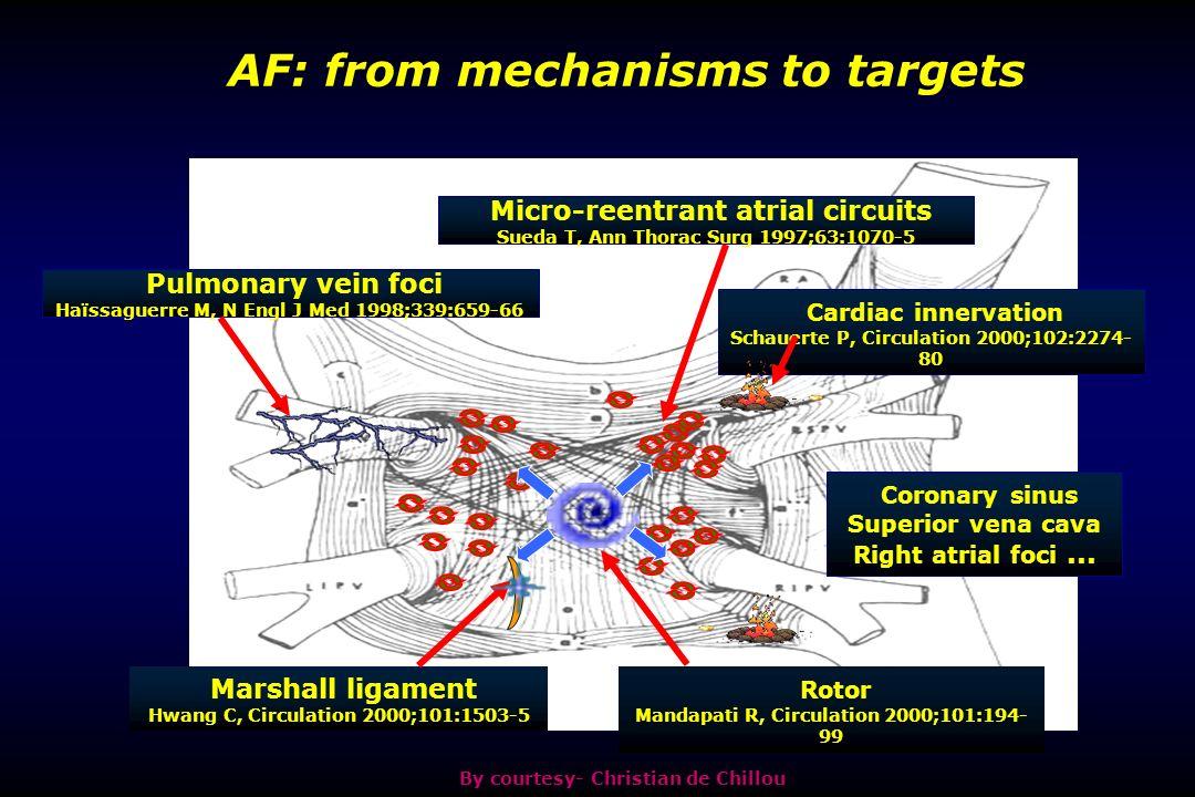 Micro-reentrant atrial circuits Sueda T, Ann Thorac Surg 1997;63:1070-5 Pulmonary vein foci Haïssaguerre M, N Engl J Med 1998;339:659-66 Marshall ligament Hwang C, Circulation 2000;101:1503-5 Rotor Mandapati R, Circulation 2000;101:194- 99 Cardiac innervation Schauerte P, Circulation 2000;102:2274- 80 Coronary sinus Superior vena cava Right atrial foci...