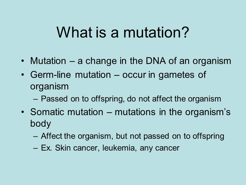 What is a mutation? Mutation – a change in the DNA of an organism Germ-line mutation – occur in gametes of organism –Passed on to offspring, do not af