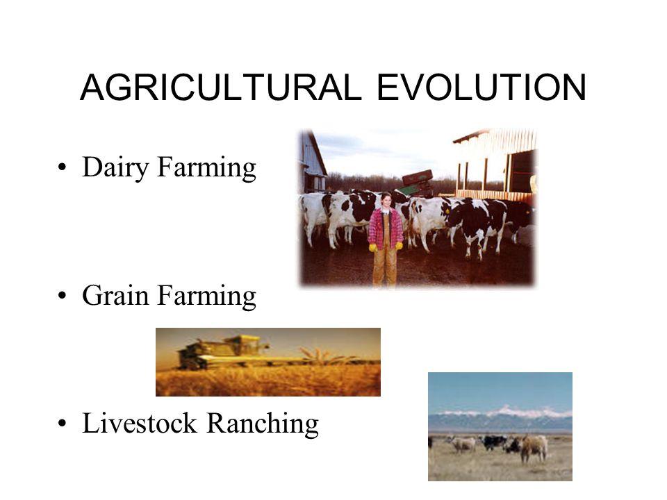 AGRICULTURAL EVOLUTION Dairy Farming Grain Farming Livestock Ranching