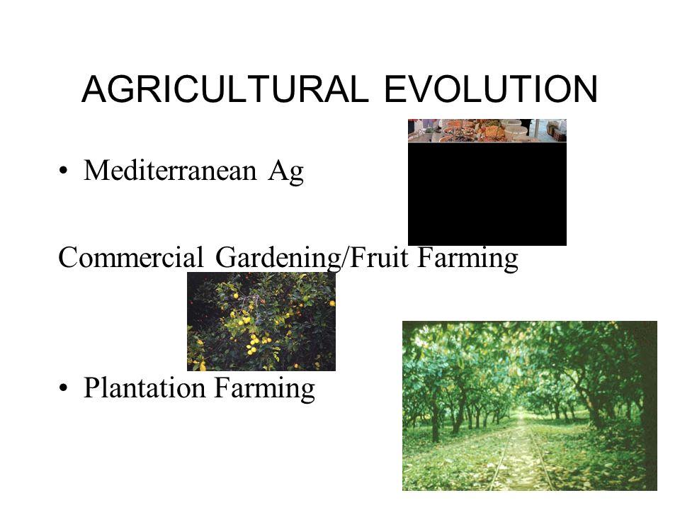 AGRICULTURAL EVOLUTION Mediterranean Ag Commercial Gardening/Fruit Farming Plantation Farming