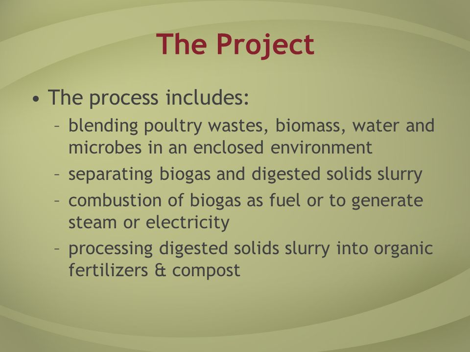 The Project The process includes: –blending poultry wastes, biomass, water and microbes in an enclosed environment –separating biogas and digested solids slurry –combustion of biogas as fuel or to generate steam or electricity –processing digested solids slurry into organic fertilizers & compost