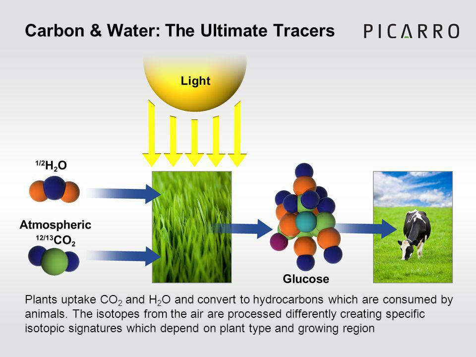 Carbon & Water: The Ultimate Tracers Plants uptake CO 2 and H 2 O and convert to hydrocarbons which are consumed by animals.